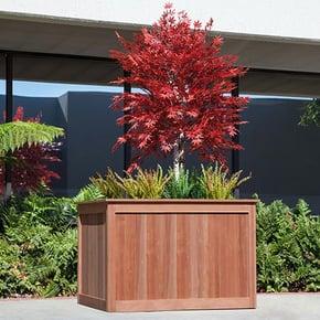 Eureka-Redwood-Planter-Maple-Tree-Barberry-Grass-079-REC-LG