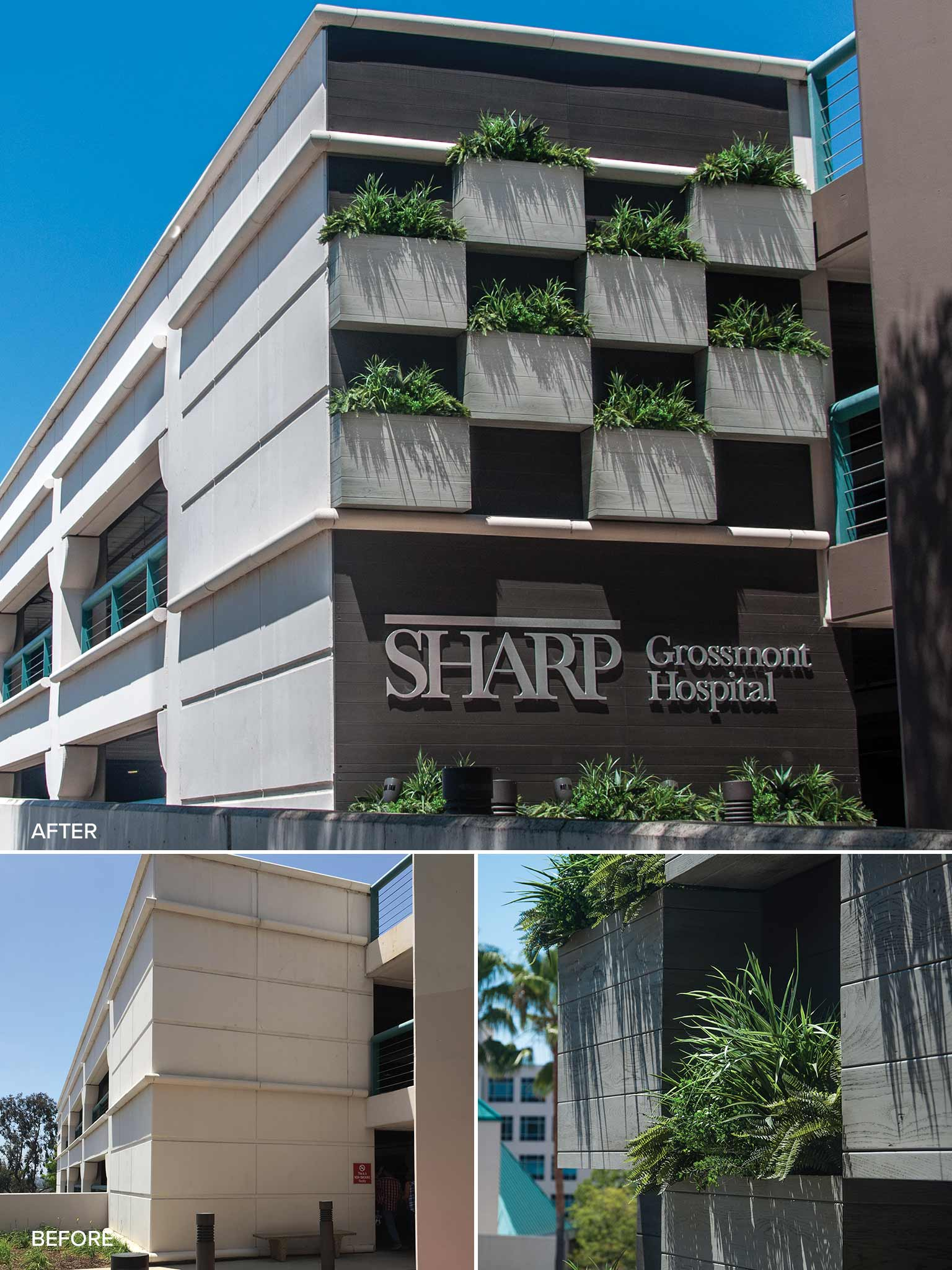 Sharp-Hospital-Before-and-After